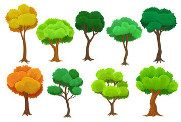 Seasonal trees set, summer and autumn trees vector Illustrations on a white background