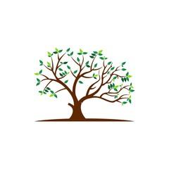 Tree logo,People logo,family logo,green eco logo,Health Logo Template