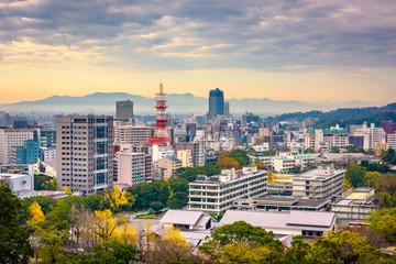 Kumamoto City, Japan Skyline