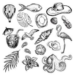 Hand drawn sketch illustration summer collection