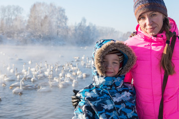 Woman at winter nonfreezing lake with white whooping swans. The place of wintering of swans, Altay, Siberia, Russia.