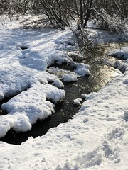 Beautiful winter stream flows in the forest