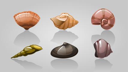 set of vector seashells