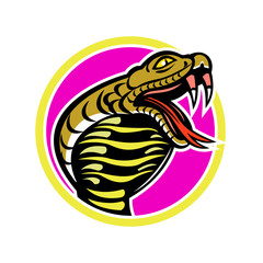 Mascot icon illustration of king cobra, Ophiophagus hannah, or hamadryad, a venomous snake in family Elapidae, endemic to Southeast Asia set inside circle on isolated background in retro style.