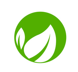 leaf logo design for nature icon or agriculture product