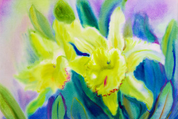 Painting abstract  watercolor yellow soft green color of orchid flowers.