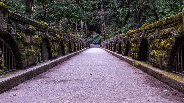 Whatcom Falls Park, Bellingham, Washington, USA.