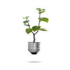 Green energy symbols ecology, light bulb