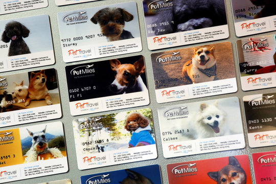 """""""Pet Miles"""" member cards, issued by Life Travel, are displayed at their office in Hong Kong"""