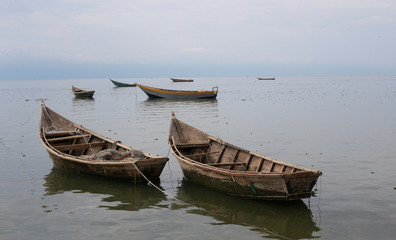 Fishing boats used by Congolese people fleeing ethnic fighting in Congo float on the shore of Lake Albert