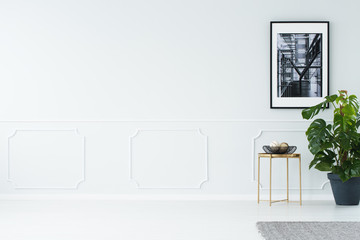 Empty wall in minimalist apartment