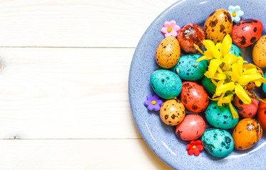 Easter colored-red, blue, yellow quail eggs on blue plate on white wooden background.Top view.Rustic style.Flat lay.Happy easter holiday
