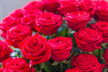 Red roses bouquets for bride