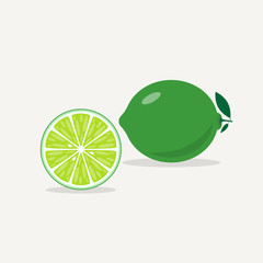 Fresh whole lime green with leaves. Cut half of citrus. A piece with a juicy pulp. Texture of the lobule of fruit. Isolated vector illustration.