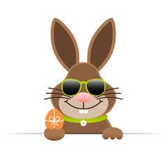 Single Easter Bunny Sunglasses Egg Horizontal Banner Green