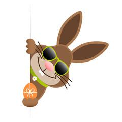 Single Easter Bunny Sunglasses Egg Banner Green