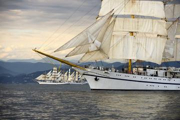 Sailing ships race. Yachting. Sailing