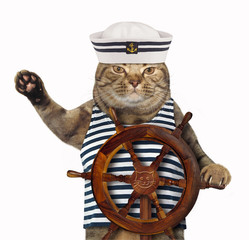 The cat wears a sailor hat and a shirt. White background.