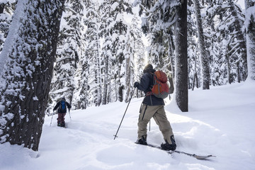 Male friends skiing on snowcapped mountain