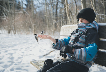 Boy with birds perching on his hand while sitting on bench during winter
