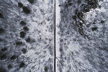 Aerial view of road passing through snow covered forest