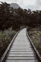 Empty path through forest