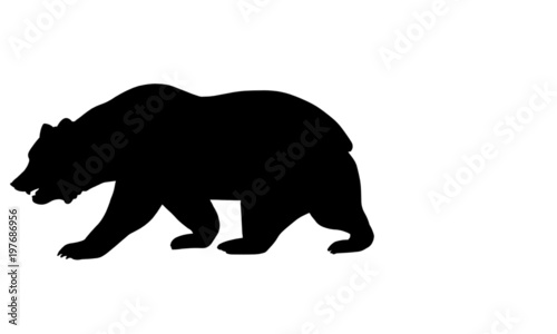 California Bear Stock Image And Royalty Free Vector Files On