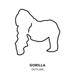 gorilla outline on white background