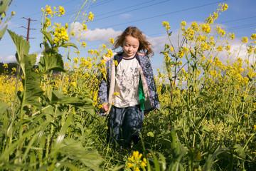 Girl walking in mustard flower field in summer