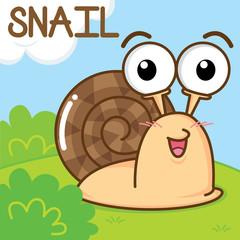 A cute snail in the garden.
