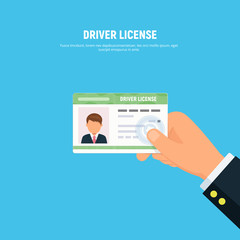 Close-up of person hand holding driver license. id card of driver with photo. Vector illustration in flat style.