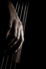 Poster Muziek Cello strings. Cellist hands playing violoncello pizzicato