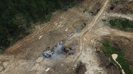 Deforestation - environmental destruction. Rainforest cuting down and burning forest trees