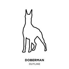 doberman outline on white background