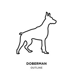 doberman outline on white background,from profile