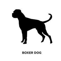 boxer dog silhouette on white background, vector illustration