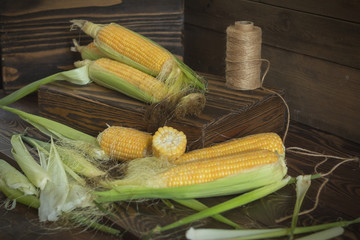 Fresh sweet corn on cobs on rustic wooden table