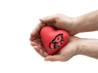 Red mechanical heart in hands isolated on white with clipping path