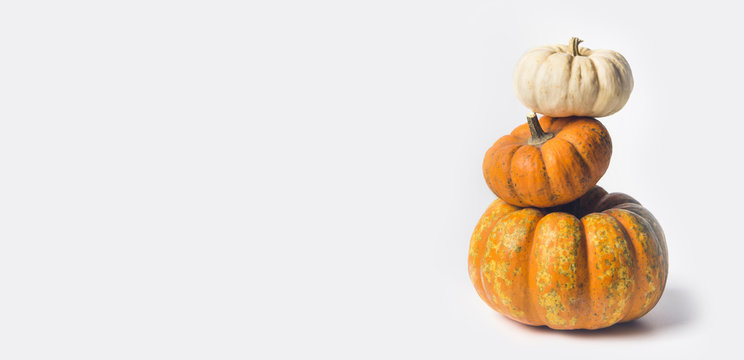 Stack of ripe pumpkins on white background, front view, copy space for text