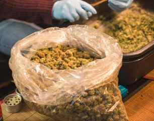 Large Bag Full of Trimmed Cannabis Flower