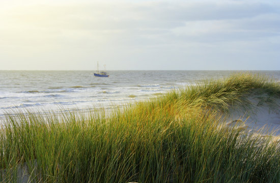 """Beautiful beach of the island """"Amrum"""" in late afternoon. Germany"""
