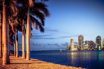 Wall Mural - Miami Florida at night with skyline buildings, bay and palm trees