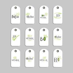 Set of Vector eco badge or tag, bio green logo.