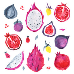 Tropical fruits. Hand painting set Isolated on white background. Watercolor Hand Drawn illustration