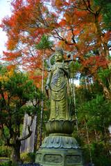 日本 紅葉と落ち葉と京都の秋 Kyoto