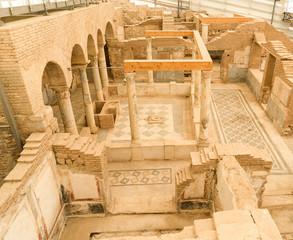 Terrace Houses in Ephesus Ancient City in Izmir, Turkey