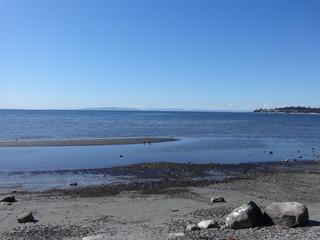 Spring sunshine at Birch Bay beach