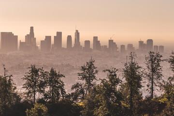 Downtown LA - Sunset