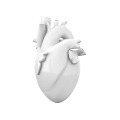 White blank heart, anatomical model isolated on white background. 3D illustration.