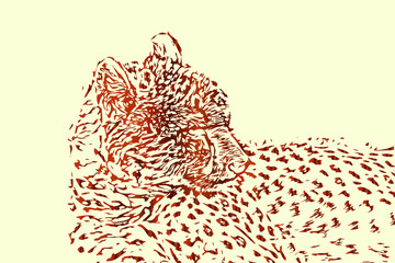 Cheetah vector sketch or drawing, abstract wildlife background illustration.